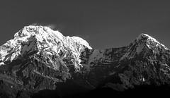 Annapurna B+W (ravalli1) Tags: nepal himalayas annapurna gangapurna mountains blackandwhite trek landruk photography asia