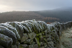 Drystone wall edge with frost (Keartona) Tags: ladybower peakdistrict derbyshire england winter november frost frosty weather landscape stonewall stone edged winhill hill mist closeup wall