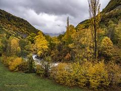 Otoño (tonygimenez) Tags: otoño pirineos colorido lluvia aragón españa arboles nubes huesca rio paisaje maturaleza