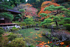 Ginkakuji Temple (Patrick Foto ;)) Tags: architecture asia autumn beautiful beauty buddhism buddhist building butchart color colorful design fall famous garden gardening ginkakuji green heritage japan japanese kyoto landmark landscape leaf maple nature old outdoor park path pavilion peaceful pond red religion season seasonal silver temple tokyo tourism traditional travel tree view water yellow zen kyōtoprefecture