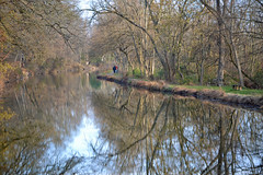 November Walk (MTSOfan) Tags: canal unioncanaltunnelpark autumn november reflections symmetry towpath lebanon