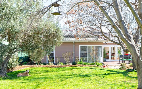 54 Campbell Street, Ainslie ACT 2602