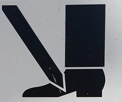 Javelin Danger (Bracus Triticum) Tags: javelin danger アルバータ州 alberta canada カナダ 8月 八月 葉月 hachigatsu hazuki leafmonth 2019 reiwa summer august