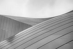 disney hall abstract (Robert Borden) Tags: bw blackandwhite mono monochrome monochromicity blancoynegro nero design detail architecture la losangeles cali socal california disney disneyhall waltdisneyconcerthall abstract art artists