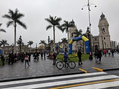 World Cup in Lima (christinekcozzo) Tags: lima peru palmtrees fifa worldcup palm city worldcup2018
