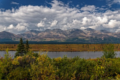 I Looked Across an Alaskan Tundra (thor_mark ) Tags: alaska2019 alaskarange alaskayukonranges alongroadside azimuth319 bluesskieswithclouds canvas clouds colorefexpro day4 dxophotolab3edited freeversepoetry hayesrange hillsideoftrees imagecapturewitharsenal lake landscape lookingnw mirrorlake mountainpeak mountains mountainsindistance mountainsoffindistance mountainside nature nikond800e outside partlycloudy poetryandprose portfolio project365 ridgeline ridge ridges roadsidepulloff roadsidestop rollinghillsides sunny trees witharsenal poemsused summit alaska unitedstates