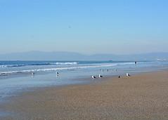 Manhattan Beach (RivetsnFeathers) Tags: pacific ocean water sea waves surf beach sand california los angeles