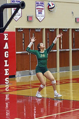 IMG_4233 (SJH Foto) Tags: girls high school volleyball bishop shanahan north allegheny state finals aaaa