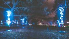 Interaction (RTA Photography) Tags: wavelengthfestival outdoors lightdisplay longexposure movement trees torquay torbay torreabbey night dark lowlight nikon d750 tamron2470mmf28vcusd 28 f28 blue lighttrails event flickr people colours eyeview
