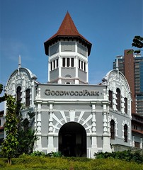 the Goodwood Park hotel (SM Tham) Tags: asia southeastasia singapore scottsroad goodwoodparkhotel hotel building architecture colonial tower nationalmonument