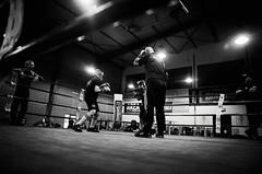 45348 - Ring (Diego Rosato) Tags: ring criterium giovanile young little boxer piccolo pugile maestro master nikon d700 tamron 2470mm rawtherapee bianconero blackwhite boxe boxing pugilato boxelatina