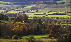 Green Fields And Farms.. (Picture post.) Tags: landscape nature green autumn farms fields shadows sunlight trees paysage arbre