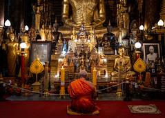 Facing The Buddhas (Luang Prabang, Laos. Gustavo Thomas © 2019) (Gustavo Thomas) Tags: facing buddha statues temple buddhism budismo buda religion laos luangprabang wat meditation mystic misticismo travel viyager asia indochine orange golden leica