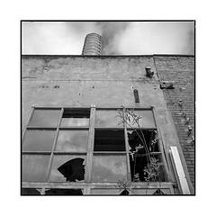 broken tool • turckheim, alsace • 2018 (lem's) Tags: ruin factory usine ruine urbex turckheim alsace rolleiflex t