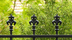 atten...tion  [Explore-2019-11-22] (Gazman_AU) Tags: fencefriday hff fence metal rail finials