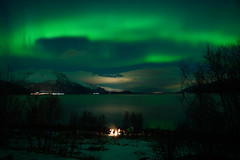 00309387 (Daniel John Benton) Tags: troms norway stars norge europe scan arctic aurora scandinavia nordnorge northernlights auroraborealis nordlys eea northernnorway europeaneconomicarea trees sea mountain snow mountains tree night fire woods hill hills campfire bonfire fjell snø wood sony a7 a7iii ig