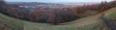 Late fall in Normafa (Behind Budapest) Tags: 2019 70d budapest canon hungary magyarorszag normafa svabhegy autumn autumnfoliage city colour erdo fall forest landscape nature outdoor outdoors outside panorama termeszet town urban woods