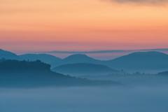 Pfalz_Morgennebel (holger.kischlat) Tags: pfalz morgennebel