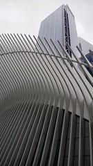 N.Y.C. (lucianoserra490) Tags: newyork manhattan grattacieli street strada