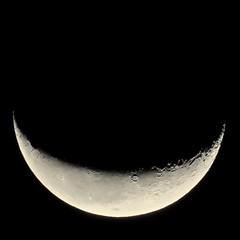 This Morning's Waning Crescent Moon (Chic Bee) Tags: moon waningcrescent wintermonsoon2019 canonpowershotsx70hs tucson arizona southwesternusa americansouthwest sky astronomy