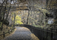 Happy Fence Friday! (JMS2) Tags: fencefriday fence nybg path autumn bridge hesterbridge park outdoor scenic outside railing trees forest bronx