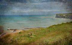 vue depuis les falaises du Tréport (.Sophie C.) Tags: letréport 76 seinemaritime normandie paysage li littoral côte mer phare falaises pse15 photoshopelements15 texture lenabem