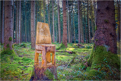 Waldkunst (Janos Kertesz) Tags: forest nature tree wood green plant landscape background outdoor environment color leaf autumn art bavaria bayern gauting kettensäge