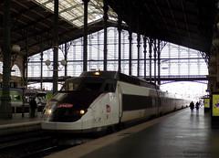 TGV PSE n°01 (Christopher L.N) Tags: tgv pse sudest 01 trains sncf paris garedunord rame