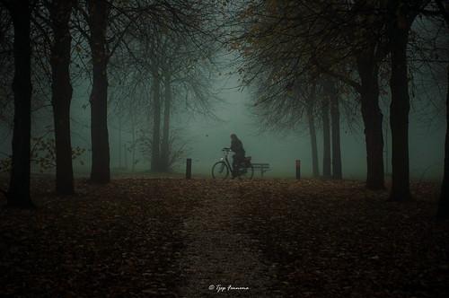 mist in de Horst Lelystad