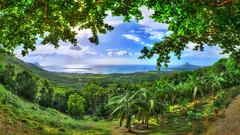 MAURITIUS Chamarel II (stega60) Tags: mauritius ilemaurice chamarel panorama hdr stiched indian ocean island ile palms green blue sky nuages clouds stega60