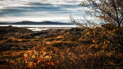 Amazing Iceland - Thingvellir National Park III (Passie13(Ines van Megen-Thijssen)) Tags: ijsland iceland island thegoldencircleclassic thingvellirnationalpark canon inesvanmegen inesvanmegenthijssen