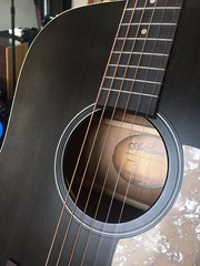 Photo of Art and Luthier acoustic guitar