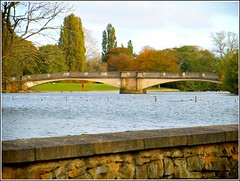 Lakeside Bridge .. (** Janets Photos **) Tags: uk hull hullseastpark eastyorkshire publicparks bridges stonework spans
