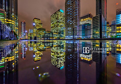 South Quay - Canary Wharf, London, UK (davidgutierrez.co.uk) Tags: london photography davidgutierrezphotography city art architecture nikond810 nikon urban travel color night blue photographer tokyo paris bilbao hongkong uk person people bridge londonphotographer twilight bluehour colors colour colours colourful vibrant england unitedkingdom 伦敦 londyn ロンドン 런던 лондон londres londra europe beautiful cityscape davidgutierrez capital structure britain greatbritain ultrawideangle afsnikkor1424mmf28ged 1424mm d810 arts landmark attraction historic iconic icon touristattraction street streetphotography 倫敦 reflection puddle
