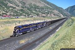 Well Dressed in Blue and Gold (jamesbelmont) Tags: locomotive railway railroad coal gomex spanishfork riogrande utahrailway sd40m2 emd motivepowerindustries