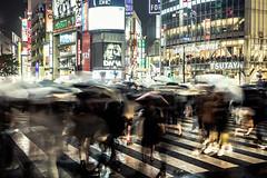 Shibuya Crossing, Tokyo (Piotr_Lewandowski) Tags: shibuyascramble shibuyacrossing shibuya tokyo japan nippon night nightlights nightshot rain longexposure slowshutter people street streetphotography urban city umbrella blurred asia crossing