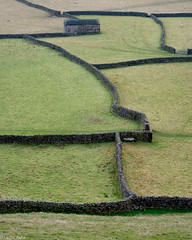 Swaledale walls (Les Ashe) Tags: england yorkshire dales swaledale fields walls drystone bath building