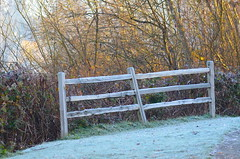 Frosty Fence For Friday (Neal D) Tags: bc abbotsford milllake fence frost