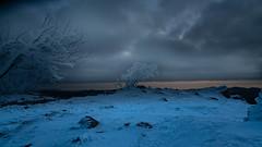 . .  .  . und dann ging endlich die Sonne auf (Alta Alteo) Tags: vogesen sonnenaufgang schnee winter raureif kalt felsen eisig weis baum frankreich wandern mittelgebirge gämsenland