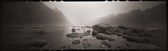 Morning Amidst the Rocks (DRCPhoto) Tags: zeroimage618 pinhole lenslessphotography kodakbw400cn 120film panoramic cheatriver prestoncounty westvirginia