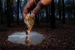 Monatsaufgabe Dezember - Spiegelung in einer Pfütze (smithjuha440) Tags: wald wasser stein hand spass sony photoshop