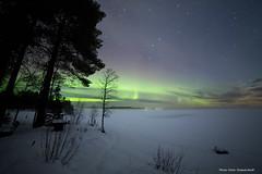 Northern light! (petergranström) Tags: approved northern light norrsken lake sjösnow snö trees träd fog dimma coppice woods buskar stars stjärnor
