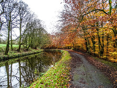 Autumn along the Leeds - Liverpool Canal (AffieFilms) Tags: canal autum leaves towpath
