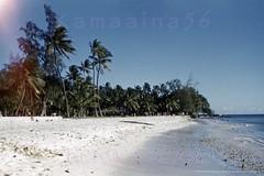 Queen's Surf Beach Waikiki 1952 (Kamaaina56) Tags: 1950s waikiki hawaii beach queenssurf slide