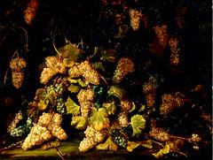 Paolo Antonio Barbieri - Natura morta (XVII Secolo) (Sparkling Wines of Puglia) Tags: uva paoloantoniobarbieri illustrated antico ancien arte naturamorta