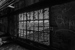 Dehors, le beau temps (Cyrille Gr) Tags: lavoirii lavoir decay usine charbon chavannes bourgogne urbex