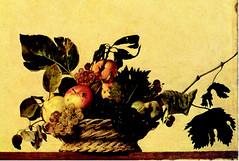 Michelangelo Merisi detto il Caravaggio - Canestra di frutta (1595-1596) (Sparkling Wines of Puglia) Tags: naturamorta uva frutta paniere illustrated illustraciones illustrazioni illustrations illustration antico ancien canestradifrutta caravaggio michelangelomerisi
