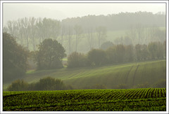 Early autumn-morning (4) (hjhoeber2) Tags: autumn herbst morgennebel morning mist zeiss batis batis28135 sony a6000 deutschland germany kalletal teutoburgerwald lippe