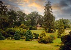 The Hermitage Garden (Beardy Vulcan II) Tags: bictonpark park hermitage garden building steps bictonhouse budleighsalterton devon england summer august 1984 20thcentury tree