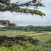L'Anse aux Meadows NHS